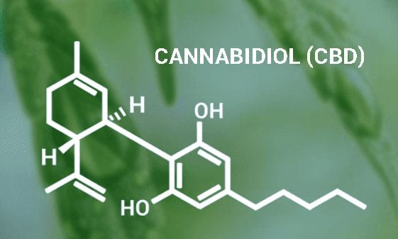 cannabidiol-cbd chemical composition