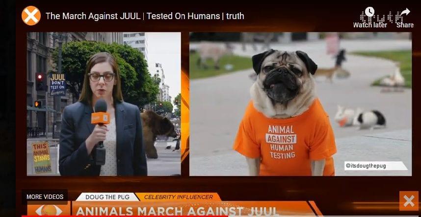 juul animal protest